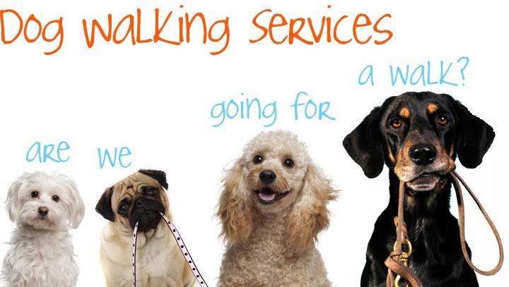 Dog Grooming Service Menu